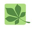 Copy of instituti i politikave mjedisore