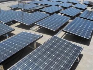 solar panels panele diellore